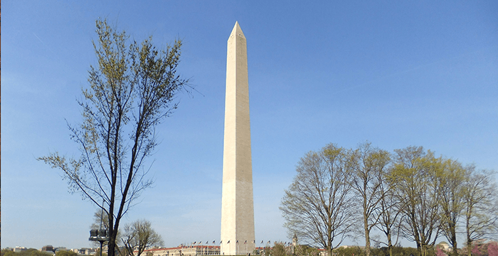 Dyslexia George Washington Monument